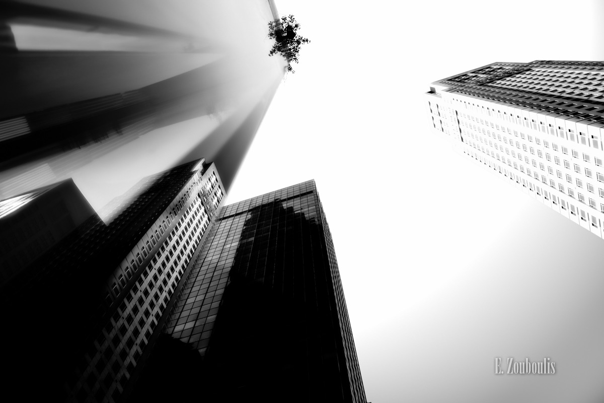 Architecture, Architektur, Black And White, Building, City, EZ00282, Fassade, Fine Art, FineArt, Glas, Glass, Licht, Manhattan, Monochrom, Monochrome, NY, NYC, New York, New York City, Schwarzweiss, Tag, USA, United States of America, Zouboulis, cityscape, day, glasfassade, glashaus, gras, grass, looking up, plant, skyscrapers, urban, zouboulis photography