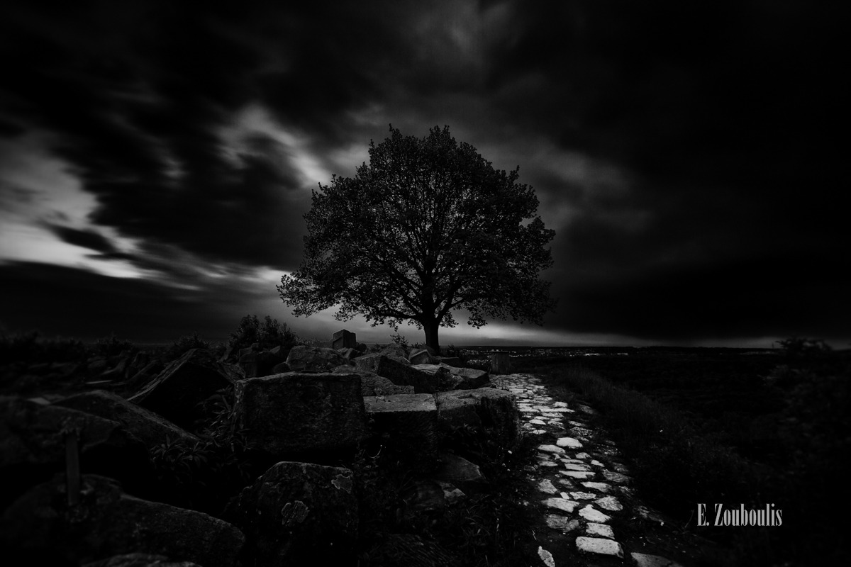 Baum, Birkenkopf, Black And White, Clouds, Dark, Darkness, Deutschland, Dunkel, Düster, EZ00329, Fine Art, FineArt, Germany, Langzeitbelichtung, Licht, Long Exposure, Monochrom, Monochrome, Monte Scherbelino, Path, Pfad, Rocks, Schutt, Schwarzweiss, Stuttgart, Stuttgart West, Tree, War, Weltkrieg, Wolken, Zouboulis, hope, krieg, mahnmal, memorial, steine, zouboulis photography